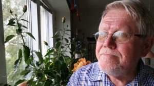 Författaren Lars Sund intill hibiskusen i hans kök i Uppsala. September 2018.