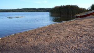 Strandkanten vid vattnet vid en badstrand.