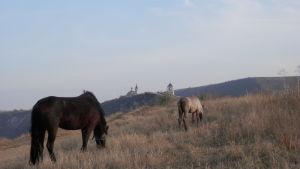 Moldavisk landsbygd