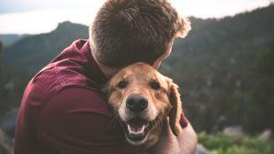 ihminen halaa koiraa