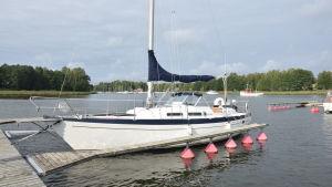 Vit segelbåt i hamn