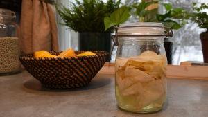 Lasipurkillinen säilöttyä juuriselleriä keittiössä