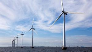 Vindparken utanför Köpenhamn består av 20 turbiner