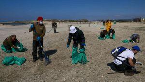 Flera volontärer rengör en strand i Israel efter att tonvis av tjära spolats upp på stranden