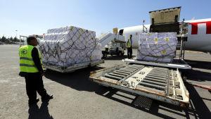 Arbetare lastar nödhjälp i form av vaccin på Sanas flygfält i Jemen.