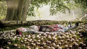 En flicka ligger bland äppel på marken.