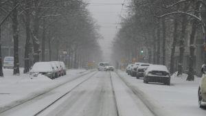 Snöfall i Helsingfors i april.