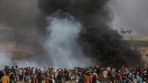 De är främst unga, arga män som deltar i de våldsamma protesterna i Gaza