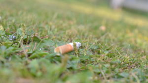 en cigarettfimp liggande på gräsmatta