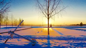 En snö- och istäckt småbåtshamn i solnedgång.