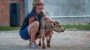 halvdöd kalv vid gränsen till Turkiet pga djurtransporter, turkisk -bulgariska gränsen 2018