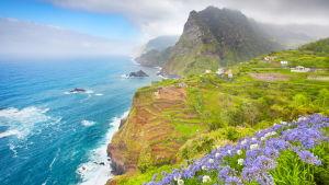 Vy över berg och hav i Madeira.