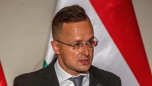 Ungerns utrikes- och handelsminister Péter Szijjártó är långvarig parlamentsledamot och han ledde tidigare Fidelitas, det styrande partiets Fidesz ungdomsorganisation.