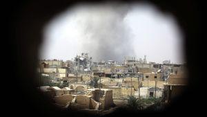 Rök stiger över östra Raqqa.