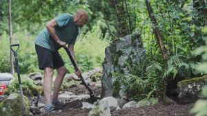 Puutarhuri Esa Kallio kaivaa lapiolla maata Hörtsänän arboretumissa Orivedellä.