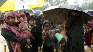 Rohingyaflyktingar i Bangladesh