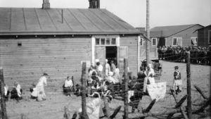 Kvinnliga röda fångar på ett fångläger i Tammerfors, 1918