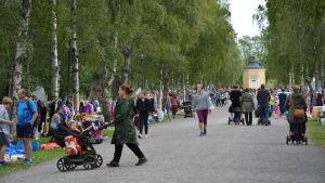 Folk som flanerar längs allén i Kuppisparken.