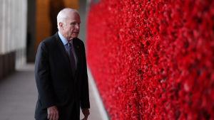 John McCain vid en röd blomstervägg.