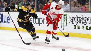 Bostons Urho Vaakanainen försvarar sig mot Detroits Gustav Nyquist.