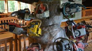 Gamla motorsågar instuckna i ett gammalt, knotigt träd inne i en utställningshall.