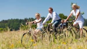en medelålders man och en medelålders kvinna är ute på cykeltur med sin dotter en sommardag.