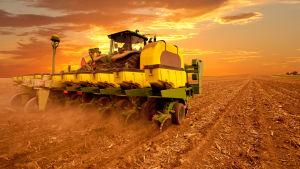 Suuri kone ajaa pellolla viljaa