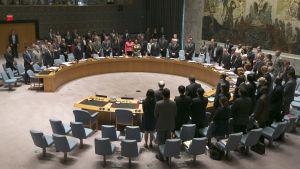 FN:s säkerhetsråd håller en tyst minut för offren i flygkraschen i Ukraina.