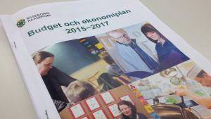 Raseborgs budget år 2015.