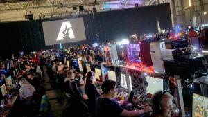 Assembly 2017, pelaaja