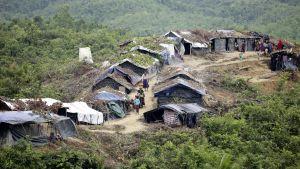 Ett av flyktinglägren i bangaldesh där rohingyaflyktingar från Burma bor