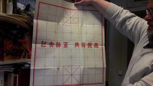 Bild på kinesiskt brädspel.