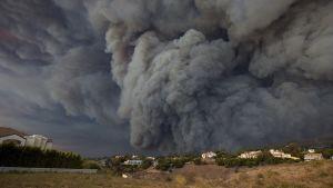 """En bild tagen i Malibu på fredagen på branden """"Woolsey""""."""