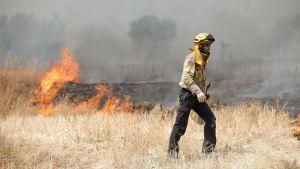Markbrand i Katalonien.