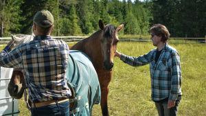 Två män i rutiga skjortar tillsammans med två hästar på en äng.