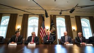 Donald Trump träffar företrädare för den amerikanska stål- och aluminiumindustrin, i Vita huset den 1 mars 2018.