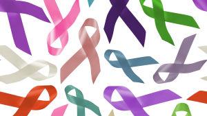 Cancerrosetter i olika färger.