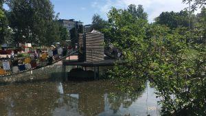 vy över äventyrsparken i kuppis. vatten och en metallbro samt fina gröna växter runtom.