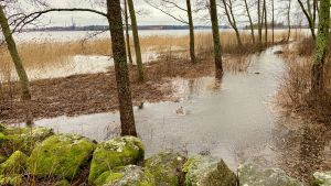 Högt vatten nedanför Vasa centralsjukhus på måndag.