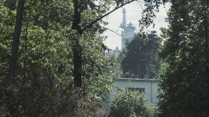 Cellulosafabrik skymtar mellan träd.