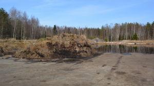 Pälsdjursdynga på gödselplatta vid farmområdet i Jakobstad