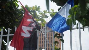 Sandinisternas och Nicaraguas flagga utanför Parlamentet.