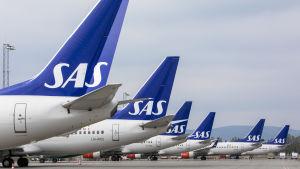 SAS-plan på rad på flygplatsen.