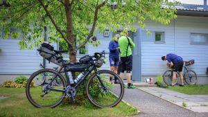 Polkupyörä nojaa puuhun, taustalla pyörälijöitä.