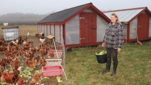 En kvinna står på gården till ett hönshus med en hink i handen.