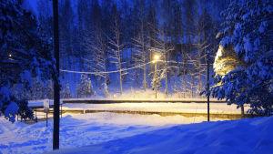 En upplyst ishockeyrink omringad av skog och stora mängder snö.