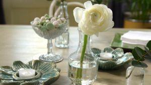 Vit blomma i glasvas på ett bord