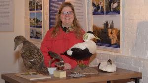 En kvinna med långt ljust hår står bakom några uppstoppade sjöfåglar. Hangö museum.