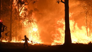 Palomies vetää letkua palopaikalle