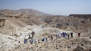 Konungarnas dal i Egypten